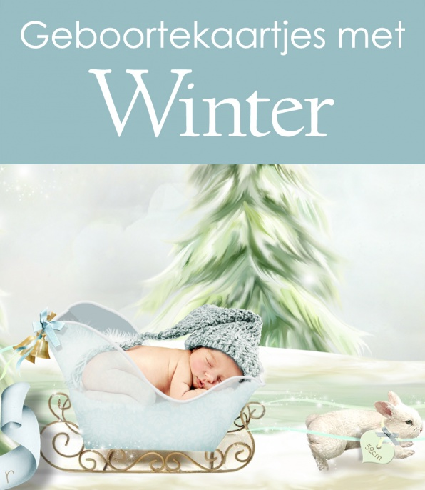Winter Geboortekaartjes