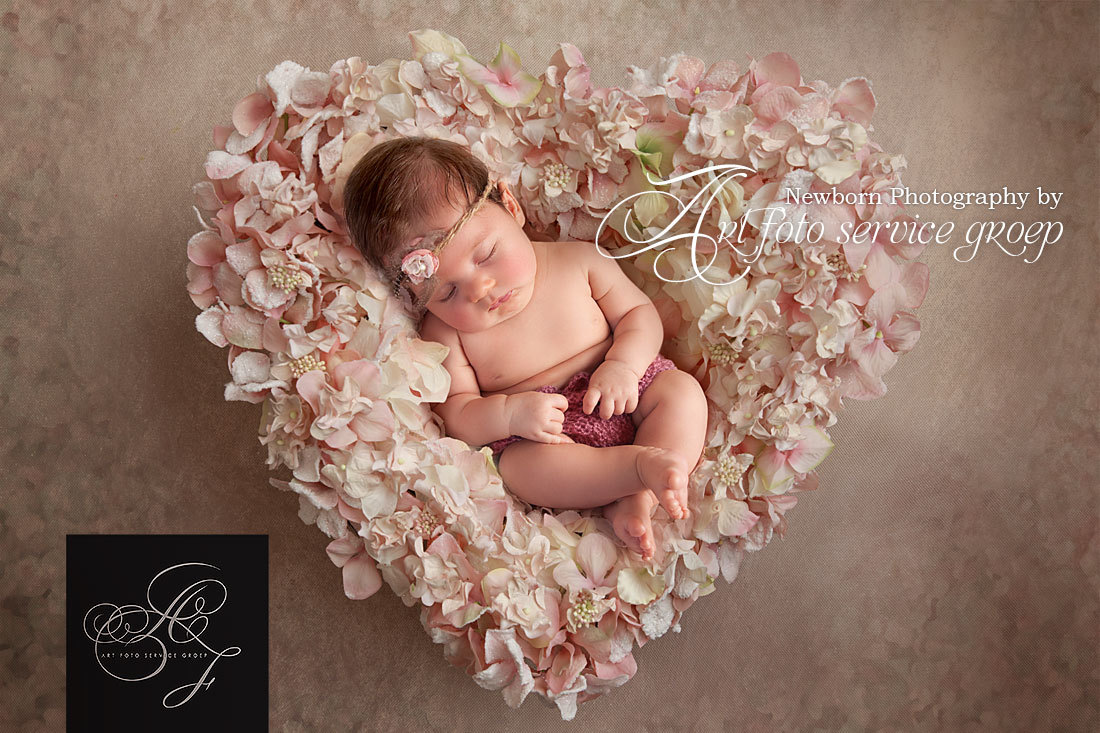 Newborn shoots by Art Foto Service Groep