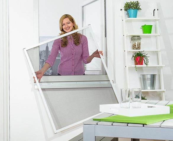 Frame screen window