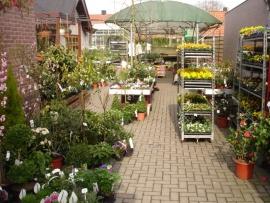 Tuincentrum Krimpen, Kortlandstraat 41, Krimpen aan den IJssel