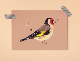 Puttertje Illustratie BIRDIE GOLDFINCH vogel postkaart
