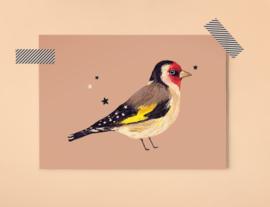 Puttertje Illustratie BIRDIE GOLDFINCH vogel postkaart