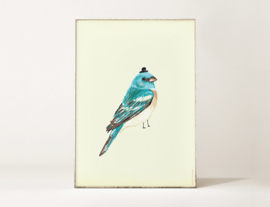 Vogel Illustratie BIRDIE IN BLUE kunst poster - A4 formaat