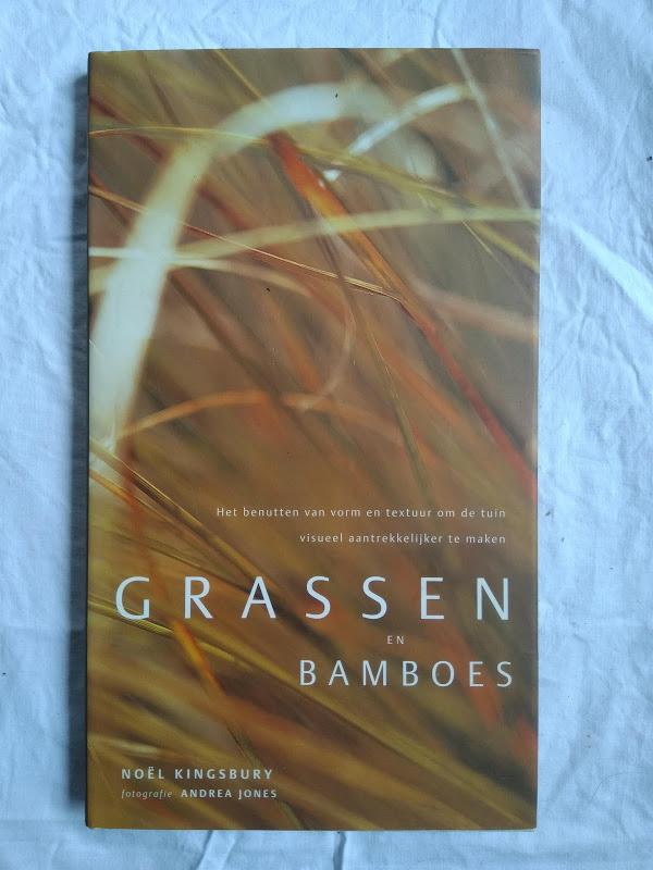Grassen en bamboes
