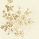Freshberries Parchment 8824 L