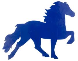 IJslandse Paardensticker (Karlslund)