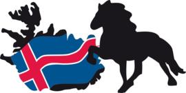 IJslands Paard met Eiland