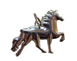 Karlslund Hanger met IJslands paard