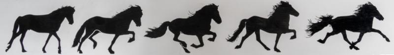 """Karlslund Sticker """"5 gangen"""""""