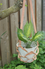 Plantenhanger  zalmroze