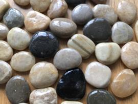 Pedra/steen