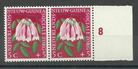 Nederlands Nieuw Guinea 57 PM in paar Postfris