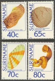 Suriname Republiek 388/391 Schelpen 1984 Postfris