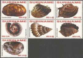 Suriname Republiek  1770/1776 Schelpen 2011 Postfris