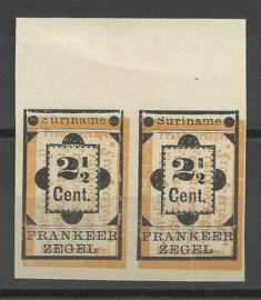 Suriname  22fva (Type II) + 22v  in ongetand paar Ongebruikt (1)