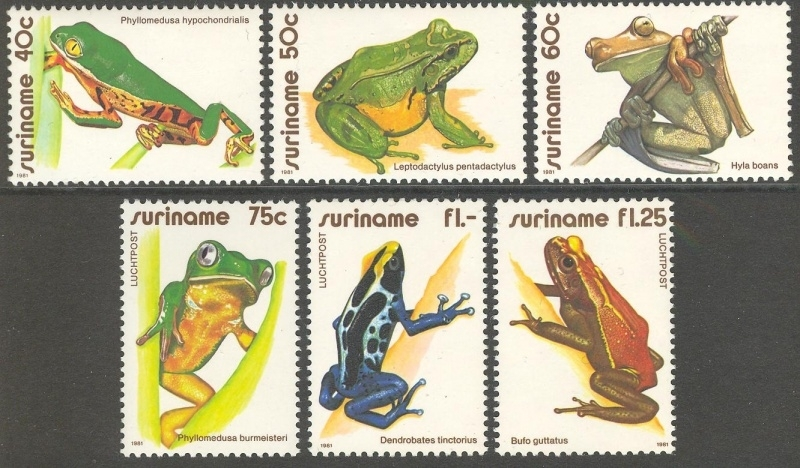 Suriname Republiek 259/264 Luchtpostzegels Kikkers 1981 Postfris