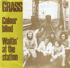 GRASS - COLOUR  BLIND