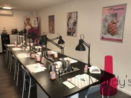 Nailart workshop Ombre + nailin zat. 29 Februari olv Marijke Voor Den Dag