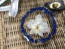 Handgemaakte display orchidee blue/white