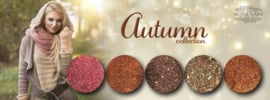 Metoe Nails Autumn Complete Collection