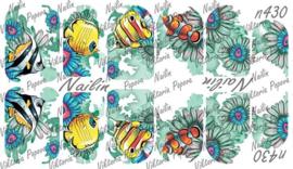 Nailin N430 zomer