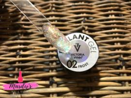 Victoria Vynn Brillant gel 02 Frost 5g