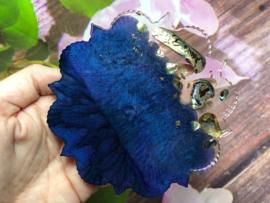 Handgemaakte display blue abalone