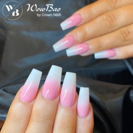 WowBao Nails Basic Acryl