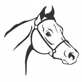 wandsticker - Paard 4