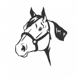 wandsticker - Paard 3