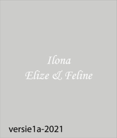 maatwerk raamfolie - Ilona
