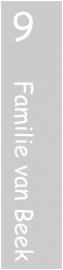 etched glass raamfolie - van beek