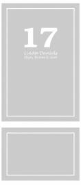 etched glass raamfolie - Linda