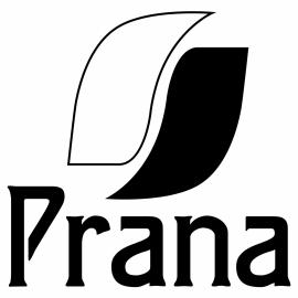 raamsticker - logo