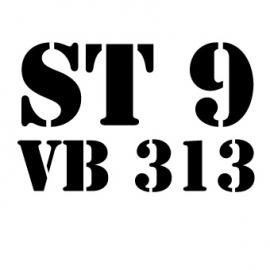 maatwerk - strijkapplicatie ST9 VB 313