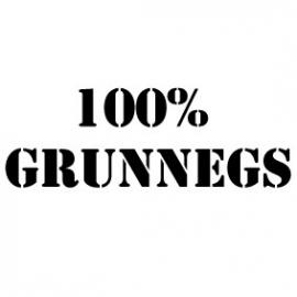 Strijkletters 100% grunnegs