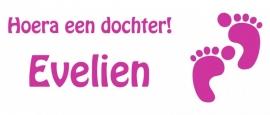 Geboortesticker- hoera een dochter Evelien