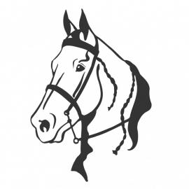 wandsticker - Paard 5