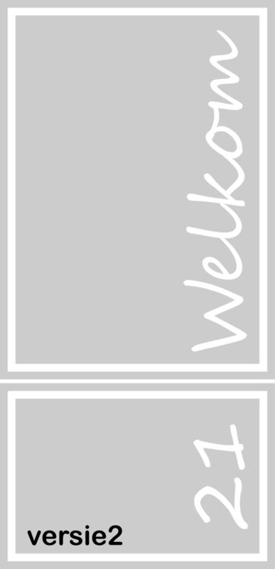 maatwerk raamfolie - Sanne