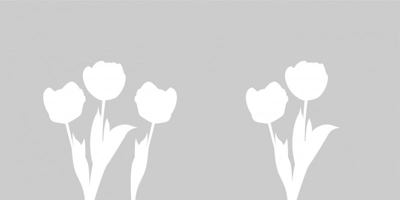 Etched glass raamfolie met bloem 8