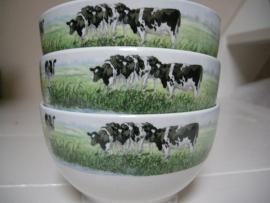 Kom Koeien Nieuwe Buren Wiebe vd Zee
