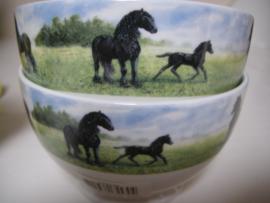 """Friese paarden kommen """"het wij gevoel"""" Wiebe v d Zee"""