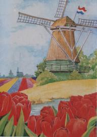 Dubbelen wenskaarten tulpen / molen 5 stuks in cadeaudoos je