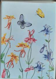 Wenskaarten 5 stuks in cadeaudoosje akelei/ vlinders