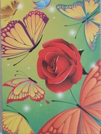 Wenskaarten is cadeaudoosjes 5 stuks rood/ vlinders