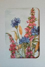 Wenskaarten korenbloem met vingerhoedskruid5 stuks in doosje