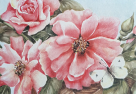 Dubbelen wenskaarten roze rozen met vlinder 5 stuks in cadeaudoos