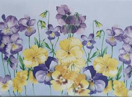 Wenskaarten  viooltjes in cadeau doosje 5 stuks