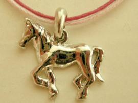 Paardenhanger aan roze veter
