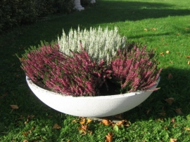 Plantenschaal 80 cm
